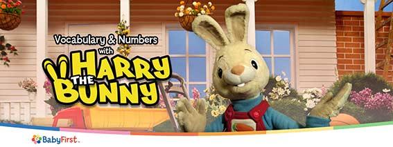 harry bunny